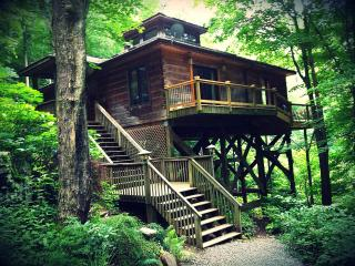 Zen Mountain House / Cabin 25 mi from Asheville - Marshall vacation rentals