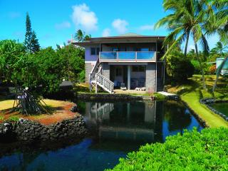 10% OFF Last Min! Kapoho Paradise Oceanfront Hm-Aquatic Pond,Champagne pond & Ocean - Kapoho vacation rentals