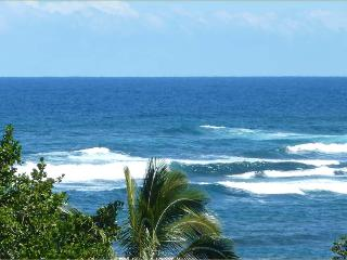 Beautiful House with Deck and Internet Access - Kapoho vacation rentals
