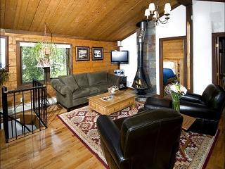 Beautifully Remodeled Vacation Home - Views of Davos Trail (23928) - Vail vacation rentals