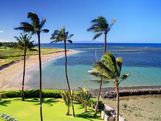 MENEHUNE SHORES, #515 - Kihei vacation rentals