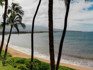 Nice 1 bedroom Kihei Apartment with DVD Player - Kihei vacation rentals