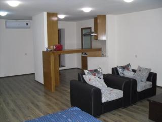 Apartment on Rustaveli Ave, Very center of Tbilisi - Tbilisi vacation rentals