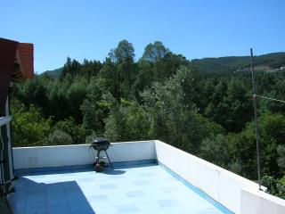 Portugal's Finest Forest Retreat  Relax & Enjoy ! - Penacova vacation rentals