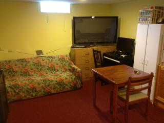 Comfortable 1 bedroom Apartment in Windsor - Windsor vacation rentals