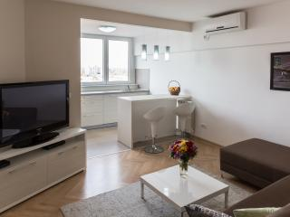 Wonderful Apartment in the Heart of Belgrade - Belgrade vacation rentals