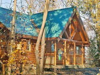 Private Romantic 2bedroom 4 miles to Dollywood Game Tables, XBox & WiFi - Sevierville vacation rentals