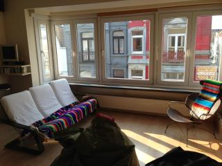 Sunny apartment 80m2 in Belle Epoque Quarter - West Flanders vacation rentals