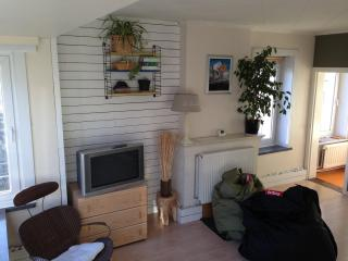 Sunny apartment 80m2 in Belle Epoque Quarter - Ostende vacation rentals