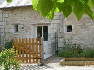 Loire Valley, charming barn, character, serenity - Chouze-sur-Loire vacation rentals