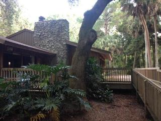 Hammock House on the Wekiva River - Deltona vacation rentals