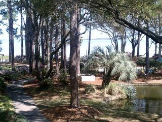 Beautiful View only Steps to the Beach! - Hilton Head vacation rentals