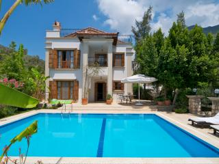 Luxury 3 bed villa with own pool and sea views - Antalya vacation rentals