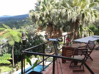 Provencial style villa in Caraibe - El Yunque National Forest Area vacation rentals