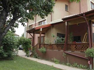 Villa Zorba Bucharest - Romania vacation rentals