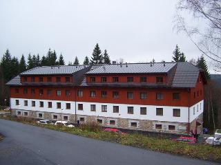 Apartament Aneta - Zelezna Ruda vacation rentals