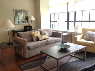 Center City Philly. Relax in Luxury and sleeps 6 - Greater Philadelphia Area vacation rentals