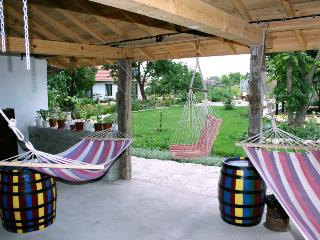 Spacious House with Dishwasher and Garden - Balgarevo vacation rentals