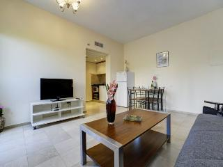 One Bedroom apartment on Dizengoff street - Tel Aviv vacation rentals