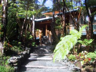 Forest Deck House - Volcano vacation rentals