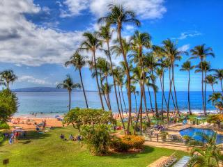 Mana Kai #207 - Fabulous Beachfront Condo - Kihei vacation rentals
