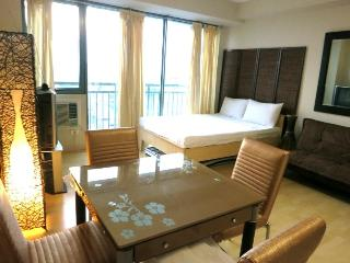 Condo in Center of Metro Manila near MRT Station - Manila vacation rentals