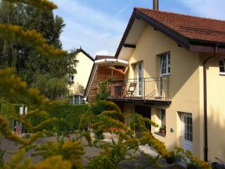Newly renovated and luxurious cottage - Versoix vacation rentals