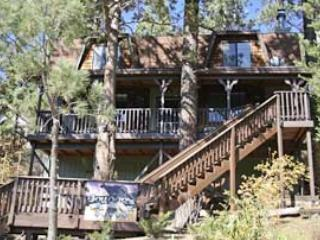 Front of Cabin - Cougar's Tree House - Hot Tub, Dish Network, WIFI - Big Bear Lake - rentals