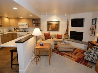 Fifth Avenue Unit 3 - Aspen vacation rentals