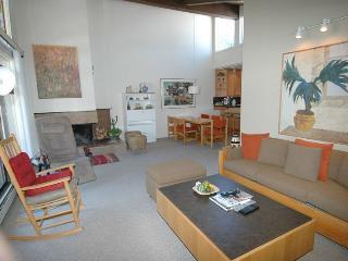 Gant Unit K301 - Aspen vacation rentals