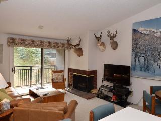 Bright 3 bedroom Apartment in Aspen - Aspen vacation rentals