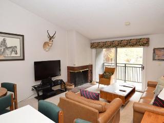 Cozy 3 bedroom Apartment in Aspen - Aspen vacation rentals