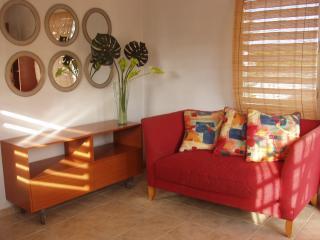 OCEAN PARK,CONDADO BEACH APT, Private & Gay friendly - Camuy vacation rentals