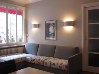 Absolutely lovely & comfortable place-town center - Lake Geneva vacation rentals