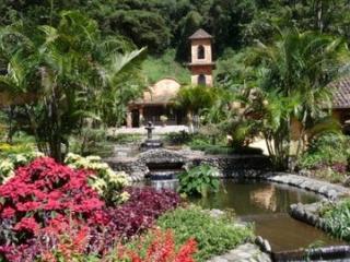 Luxury 1-bedroom apartment in idyllic Valle Escondido - Cerro Punta vacation rentals
