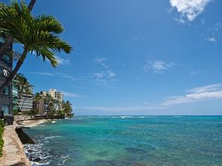 Immaculate, 1 bedroom, endless nearby beaches only $115 nt! - Honolulu vacation rentals