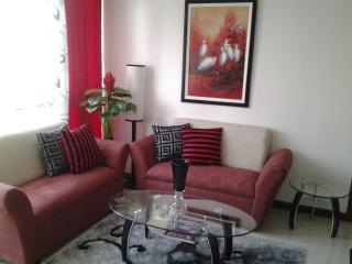 Classy Manila Condo/Apt with Free Airport Pick up - Manila vacation rentals