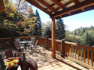Cabin Fever Rustic/Modern Vacation Rental - Palomar Mountain vacation rentals