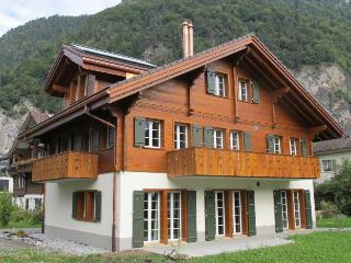 3 bedroom Apartment with Internet Access in Interlaken - Interlaken vacation rentals