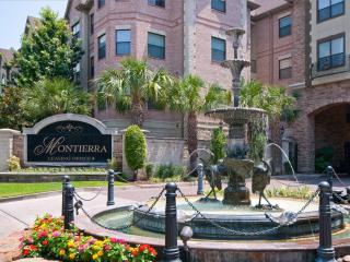 Furnished 2 bedroom Galleria area Houston TX - Houston vacation rentals