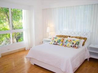 Ocean front 3 BDR Gated Apartment - Sosua vacation rentals