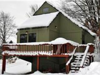 BB 12 -  Froggy's Chalet - Image 1 - Canaan Valley - rentals