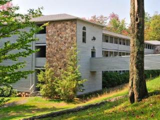 Beaver Ridge 128 - Canaan Valley vacation rentals