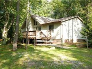 BW 27 -  459 Lakeview Road - Canaan Valley vacation rentals