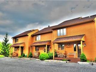 Deerfield 028 - Image 1 - Canaan Valley - rentals