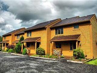 Deerfield 029 - Image 1 - Canaan Valley - rentals