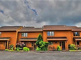 Deerfield 031 - Image 1 - Canaan Valley - rentals
