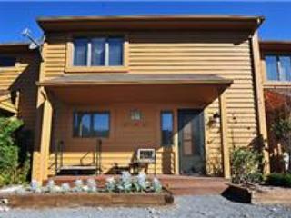 Deerfield 034 - Image 1 - Canaan Valley - rentals