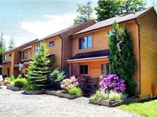 Deerfield 040 - Image 1 - Canaan Valley - rentals