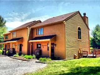 Deerfield 050 - Special Rates! - Image 1 - Canaan Valley - rentals